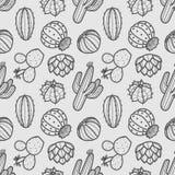 仙人掌和多汁植物深灰概述在灰色背景 S 皇族释放例证