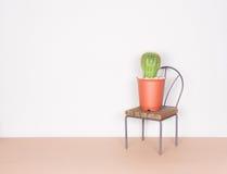 仙人掌和微型椅子,简单派样式 免版税图库摄影