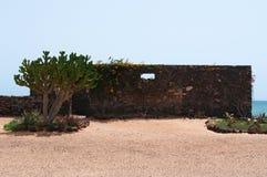 仙人掌和石墙在一个海洋风景 免版税库存图片