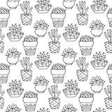 仙人掌无缝的样式例证 传染媒介多汁植物和仙人掌手拉的集合 在罐的门植物中 图库摄影