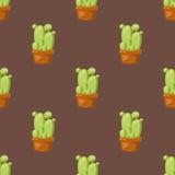 仙人掌自然沙漠花绿色墨西哥多汁热带植物无缝的样式仙人掌花卉传染媒介例证 免版税库存图片