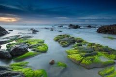 令人敬畏的生苔岩石 免版税库存图片
