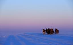 人文学科:松原市,钓鱼记录片的吉林查干湖冬天 免版税库存照片