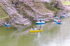 人明轮船和享用在Chidorigafu的樱花 库存图片