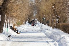 人步行在城市公园 晴朗的冬天` s天 库存图片
