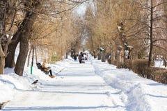 人步行在城市公园 晴朗的冬天` s天 免版税图库摄影