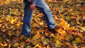 人沿秋天森林道路走撒布与下落的叶子 股票录像