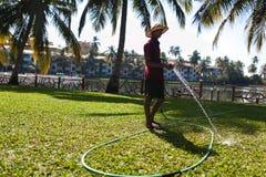 人浇灌的草 免版税库存照片