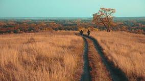 人游客旅行本质上秋天冒险生活方式 慢动作录影 两徒步旅行者室外与背包 股票录像