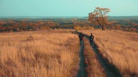 人游客旅行本质上秋天冒险 慢动作录影 两徒步旅行者室外与生活方式背包 股票录像
