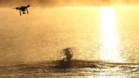 人游泳蝴蝶在湖在日落在slo mo 寄生虫结束 股票视频