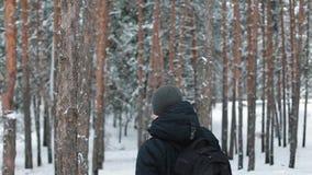 人游遍森林 股票录像