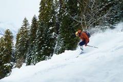 人滑雪者在粉末雪乘坐freeride在森林里 免版税库存图片
