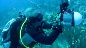 人潜水的加勒比海水下的录影 股票录像