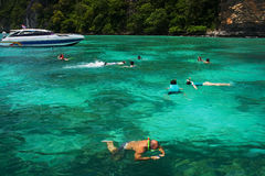 人潜航的热带 库存照片