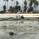 人烧在海滩的一条小船桑给巴尔 图库摄影