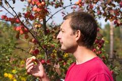 年轻人用一个小红色苹果 免版税图库摄影
