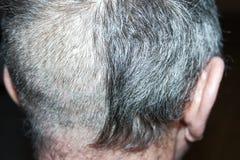 人的一种发型 库存图片