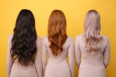 年轻人的后面看法图片在黄色背景的三个夫人 免版税库存图片