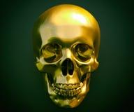 人的头骨艺术图象 向量例证