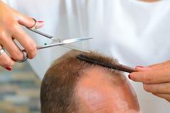 人的女性美发师切口头发 库存图片