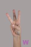 人的手和三个手指在灰色背景 库存照片