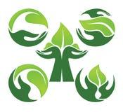 人的手和绿色生长植物 免版税库存图片