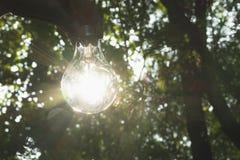 人的手拿着想法或成功的电灯泡或者太阳 免版税库存图片