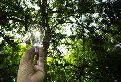 人的手拿着想法的电灯泡成功的或太阳 图库摄影