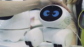 人的手接触机器人 机器人对人的接触满意 概念查出的技术白色 免版税库存图片
