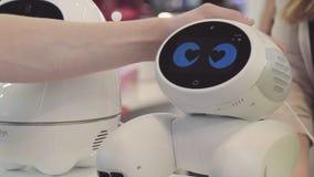 人的手接触机器人 机器人对人的接触满意 概念查出的技术白色 免版税库存照片