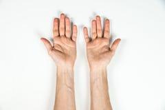 人的手顶视图在白色桌上的 库存照片