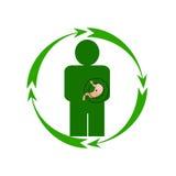 人的胃处于危险中 库存照片