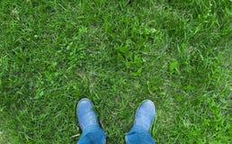 人的腿新鲜的草的 免版税库存图片