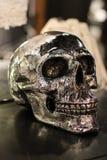 人的银色头骨复制品 库存照片