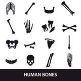 人的骨头被设置象 免版税库存图片