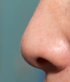 人的鼻子 免版税库存照片