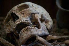人的头骨有黑暗的背景 死亡、恐怖和解剖学的概念 鬼的万圣夜标志 免版税库存照片