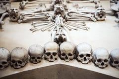 人的头骨的汇集在构成的 免版税库存图片