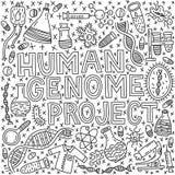 人的genom项目 皇族释放例证