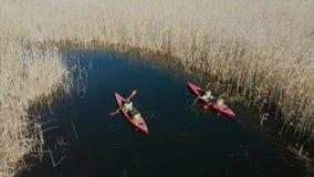 人皮船的在秋天河的芦苇中 股票视频