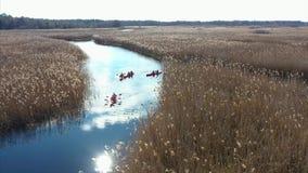 人皮船的在秋天河的芦苇中 股票录像