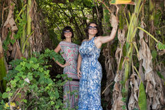 年轻人相当逗人喜爱的妇女画象绿色背景的,夏天自然 性感的美好的女孩秀丽在密林  库存图片