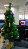 人研究计算机在办公室在圣诞树附近 免版税图库摄影
