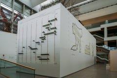 人类演变博物馆的内部一个自然历史博物馆在布尔戈斯,西班牙 免版税库存照片