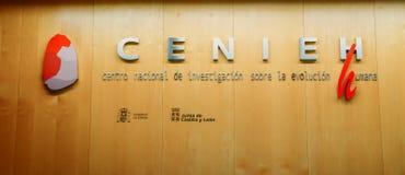 人类演变研究中心- Centro Nacional de Investigacion sobre la Evolucion Humana, CENIEH 库存照片