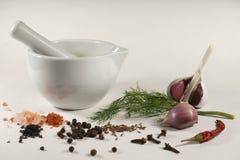 人类用新鲜的莳萝大蒜和各种各样的香料 库存照片