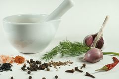 人类用新鲜的莳萝大蒜和各种各样的香料 库存图片