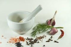 人类用新鲜的莳萝大蒜和各种各样的香料 图库摄影