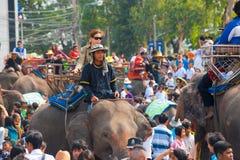 人群大象乘客培训人 图库摄影